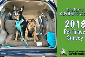 2018 Pet Travel Survey | GoPetFriendly.com