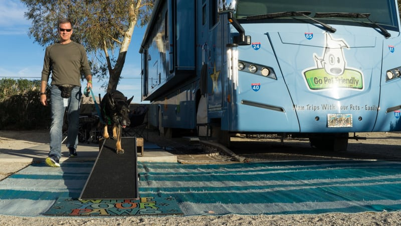 Tips for Choosing and Using an RV Dog Ramp | GoPetFriendly.com