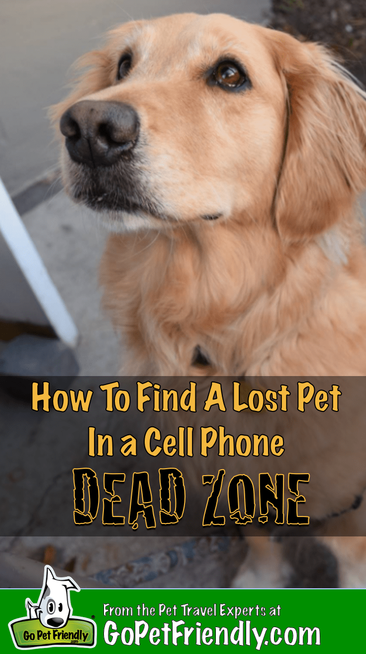 How To Find A Lost Pet In A Cell Phone Dead Zone | GoPetFriendly.com