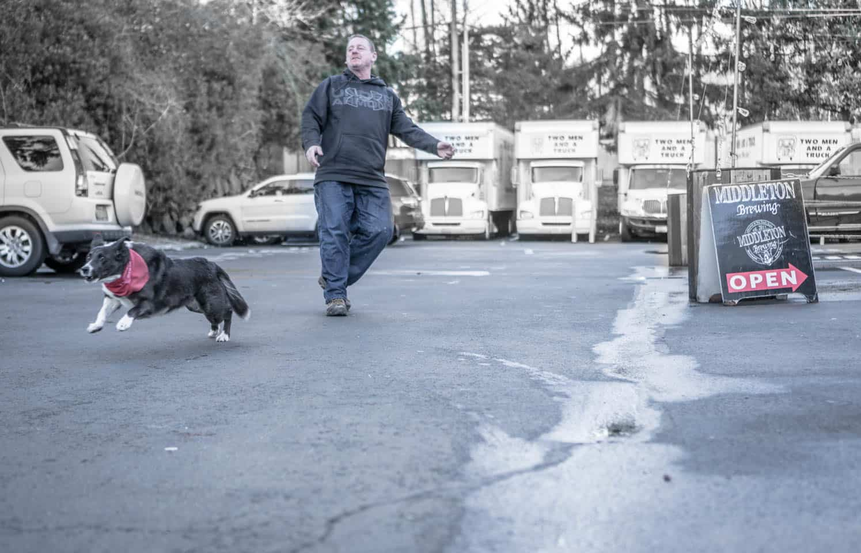 Middleton Brewery dog, Kona, plays fetch with a patron.