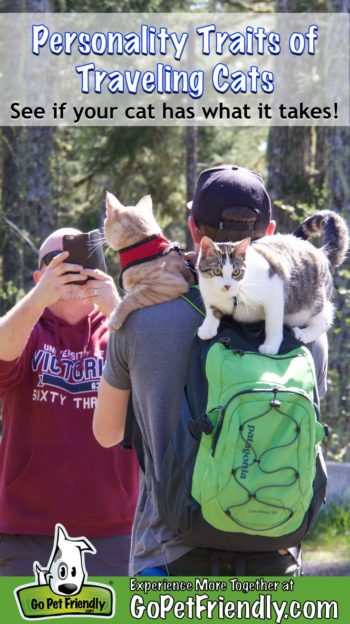 Traveling cats, Fish and Chips, post for pictures on a pet friendly trail