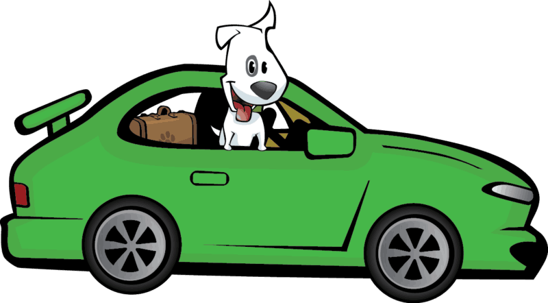 Scout in Car | GoPetFriendly.com