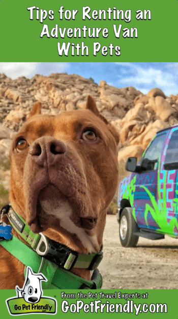 Renting an Adventure Van with Pets | GoPetFriendly.com
