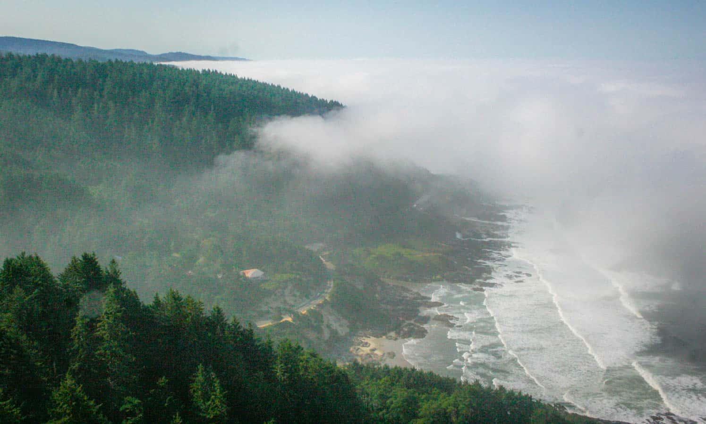 3 Pet Friendly Days on the Oregon Coast   GoPetFriendly.com