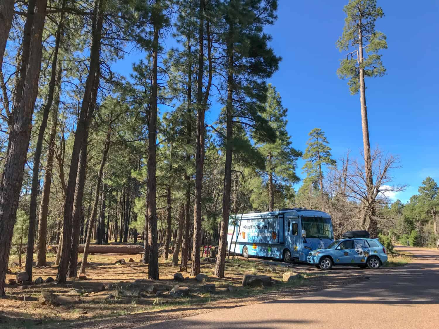Aspen Campground Review - Apache-Sitgreaves National Forests, Arizona