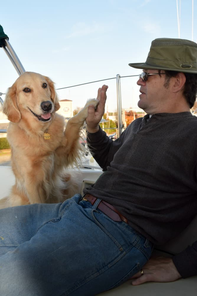 Honey the golden retriever gives a high five.