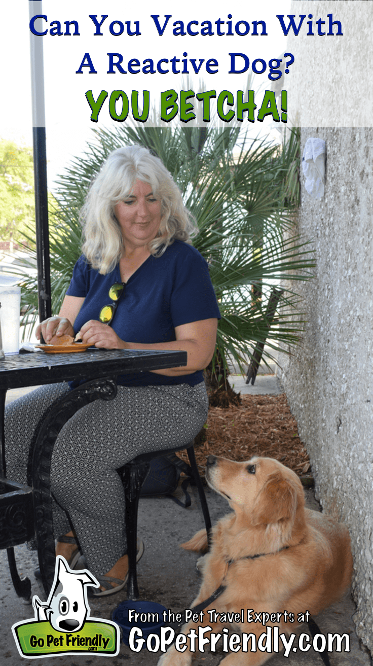 Can You Vacation With A Reactive Dog? You Betcha!   GoPetFriendly.com