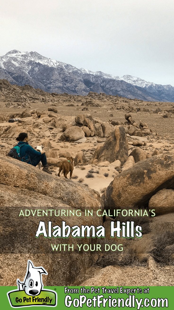 Adventuring in California's Alabama Hills with Your Dog | GoPetFriendly.com