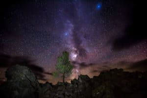 22 Best Dark Sky Parks for Pet Friendly Camping | GoPetFriendly.com