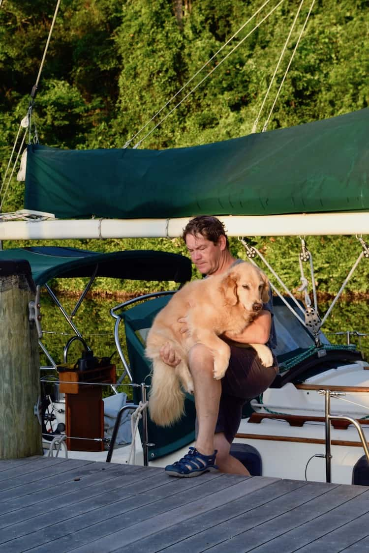 Honey the boat dog being lifted off the sailboat.