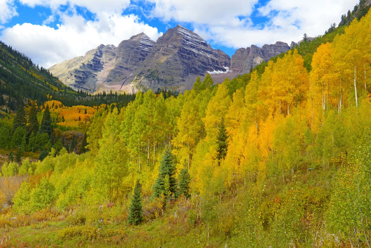 Fall Foliage and Maroon Bells in Aspen, CO