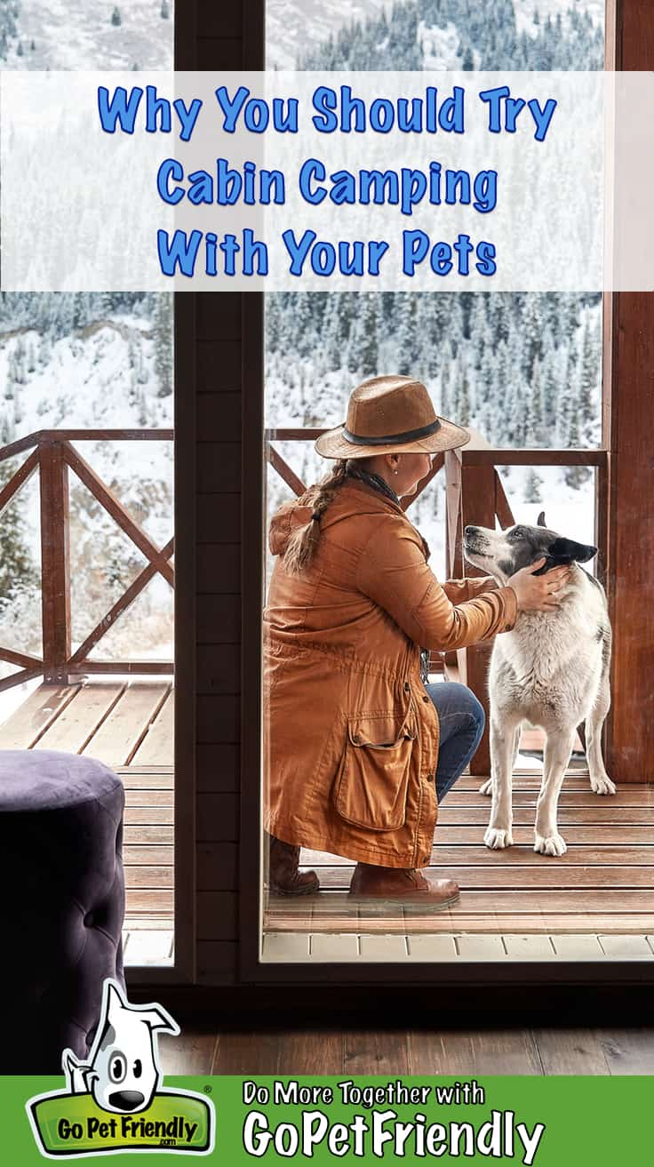 Woman scratching her dog on the deck of a pet friendly camping cabin