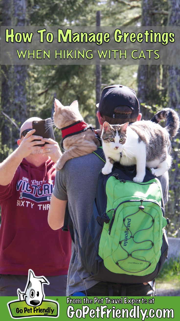 How to Manage Greetings When Hiking with Cats | GoPetFriendly.com