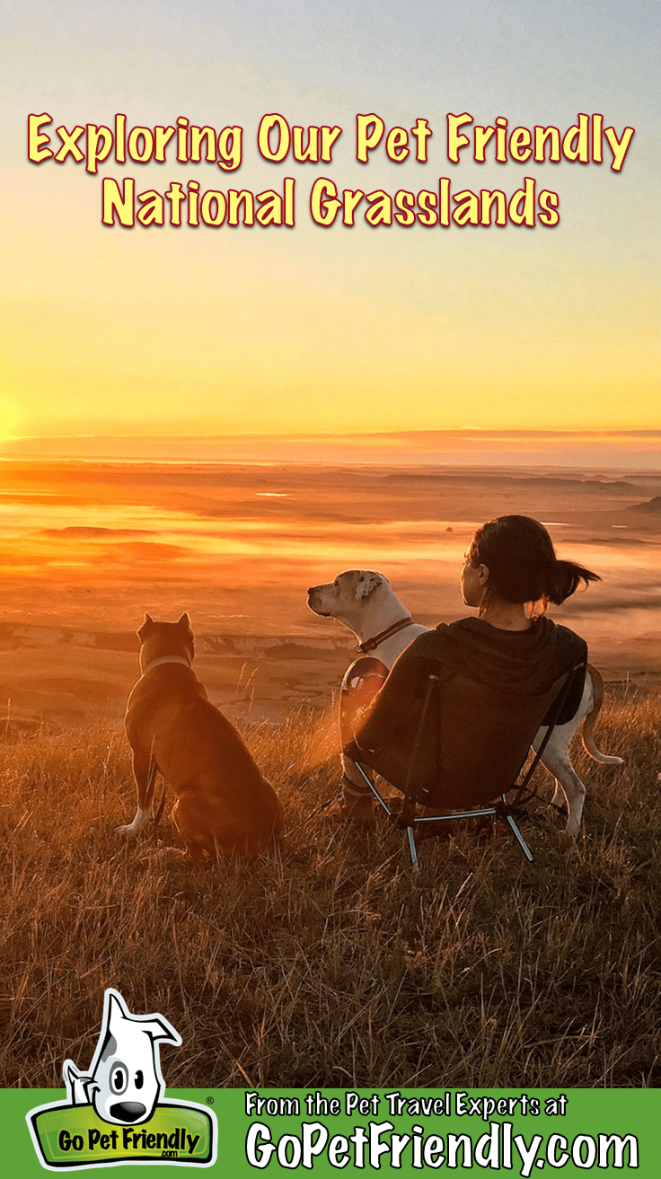 Woman with two dogs overlooking Pawnee National Grassland in Colorado