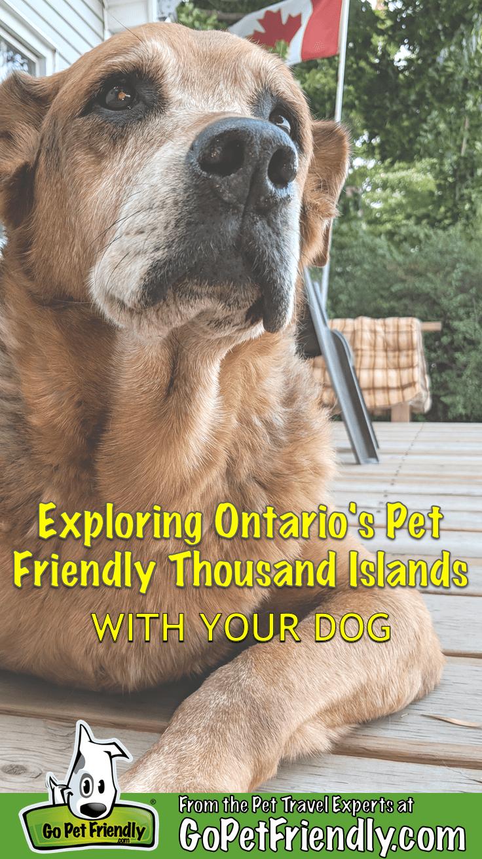 Enjoying Ontario's Thousand Islands Region With Your Dog | GoPetFriendly.com