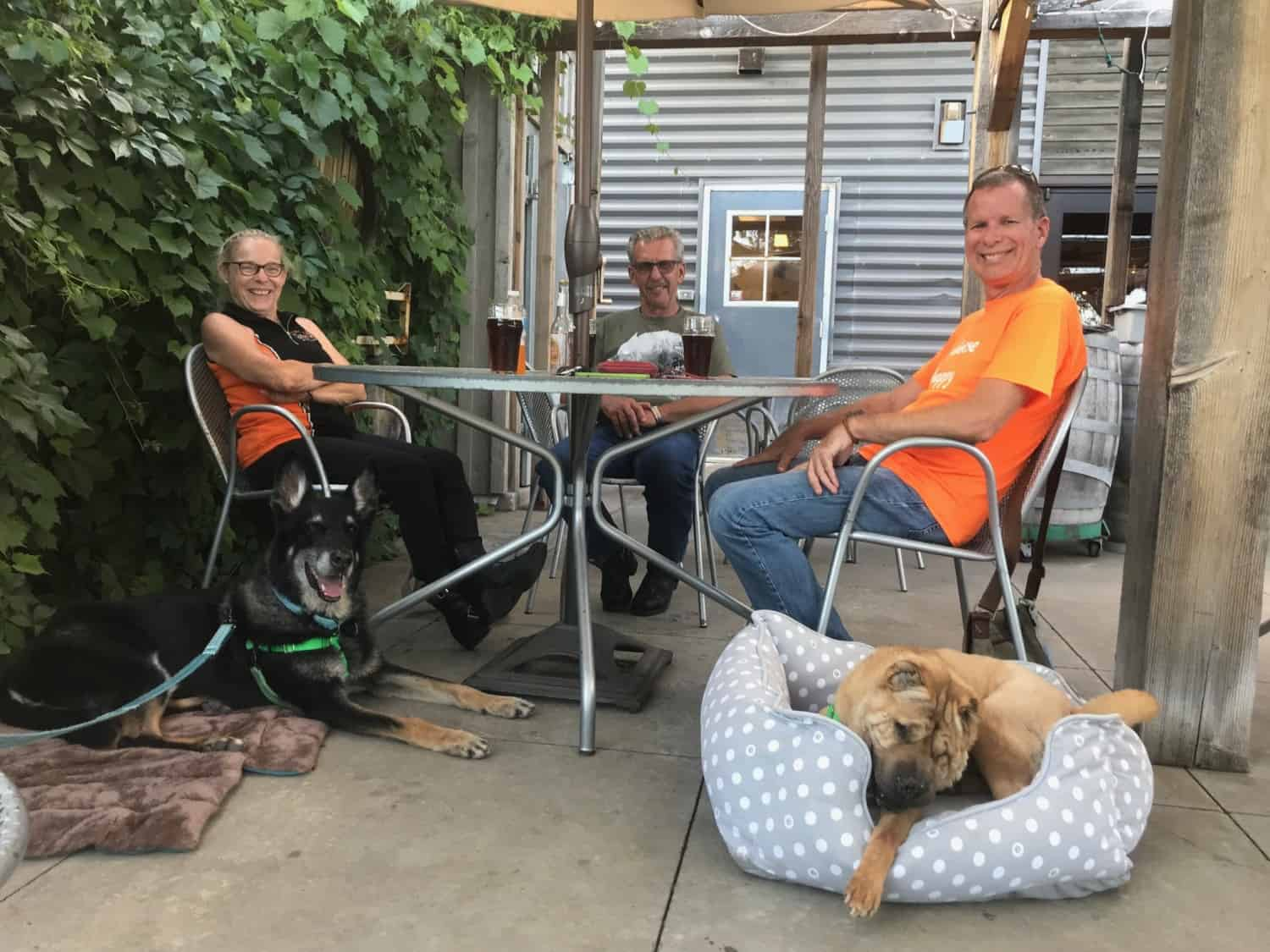Three people and two dogs at a table on the patio at a pet friendly brewery in the Black Hills