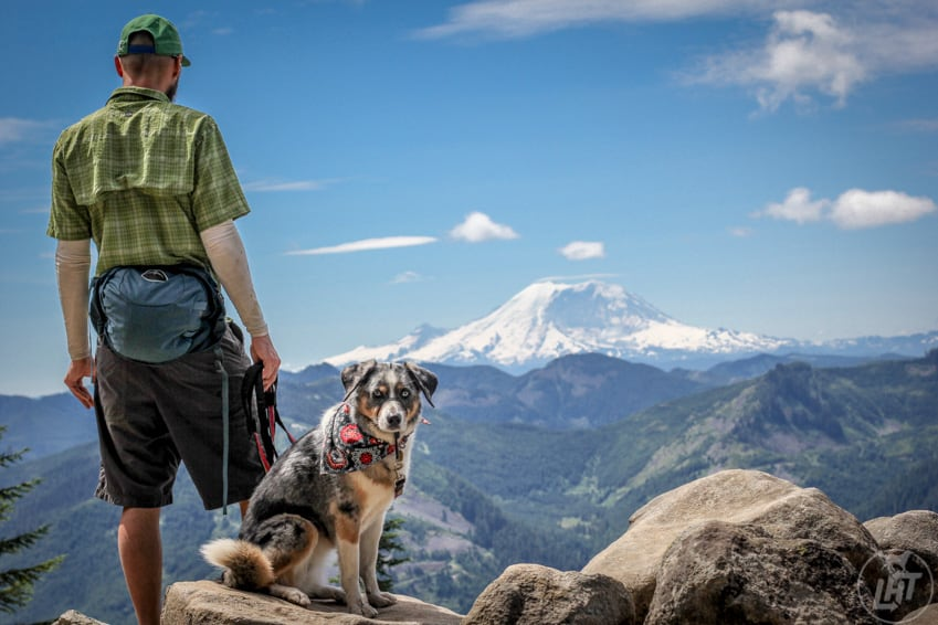Man and his dog enjoying the view of Mt. Rainier from pet-friendly Ira Spring Trail near Seattle, WA