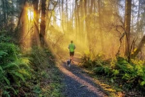 Man and dog jogging on a pet-friendly trail near Seattle, WA at sunrise