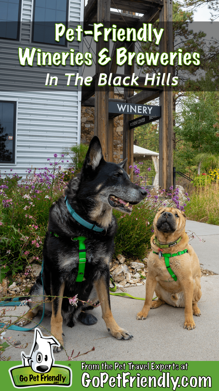 Buster and Ty from GoPetFriendly.com in front of pet-friendly Prairie Berry Winery in Hill City, SD
