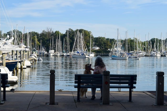 Eastport's pocket parks are a great place to enjoy with pets. (Woman and dog in silhouette on park bench in front of sailboats.)