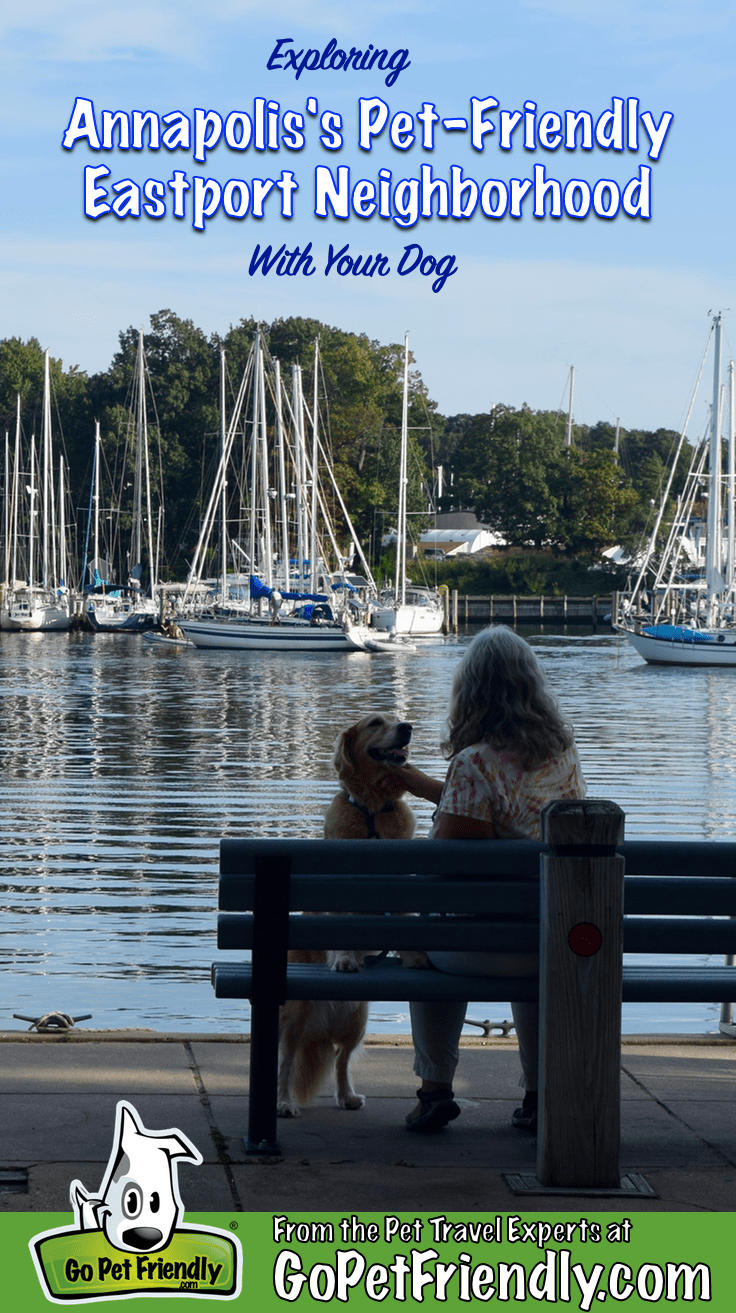 Eastport's pocket parks are a great pet-friendly places to enjoy with your dog. (Woman and dog in silhouette on park bench in front of sailboats.)