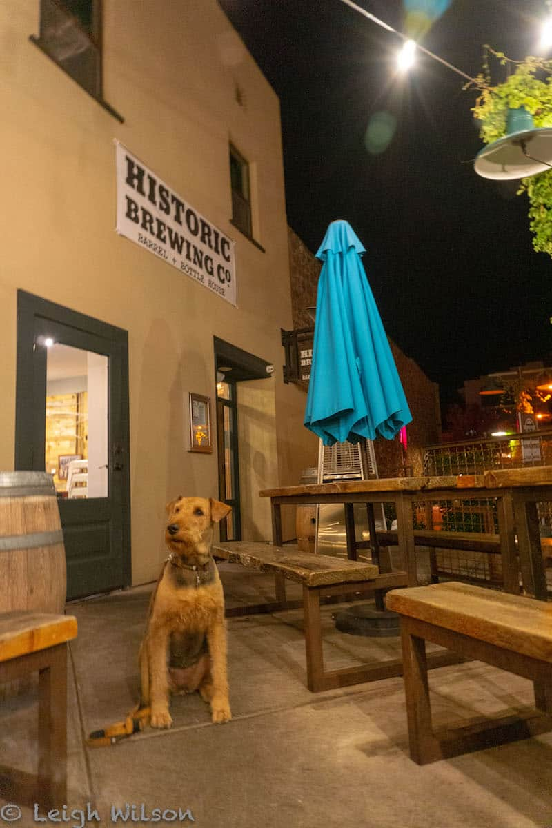 Historic Brewing Company Flagstaff Dog-Friendly Patio