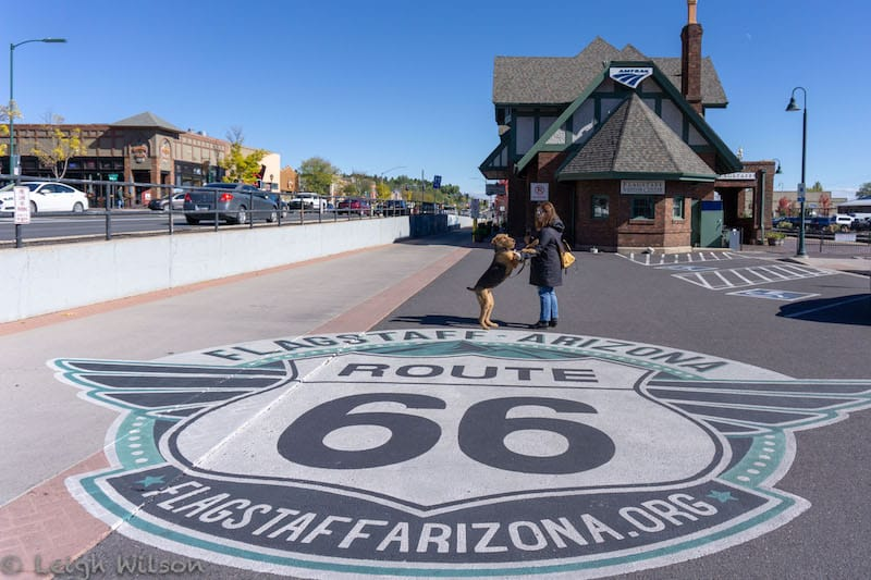 Route 66 Street Art at Flagstaff Visitor Center
