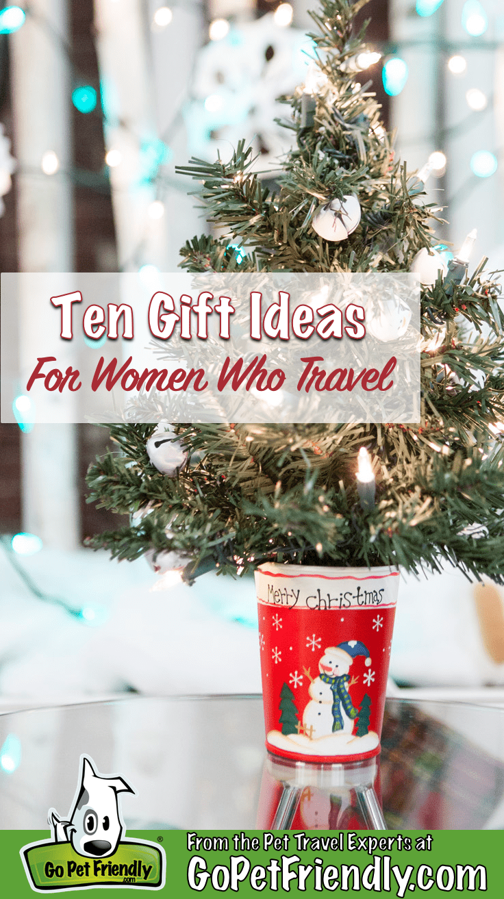10 Gift Ides for Women Who Travel - Small Christmas tree in a mug