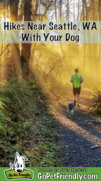 Man and dog jogging on a pet-friendly trail near Seattle, WA at sunrise