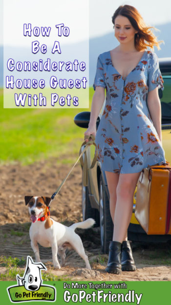 Woman in a summer dress with a suitcase in one hand and the leash of a Jack Russel Terrier in the other