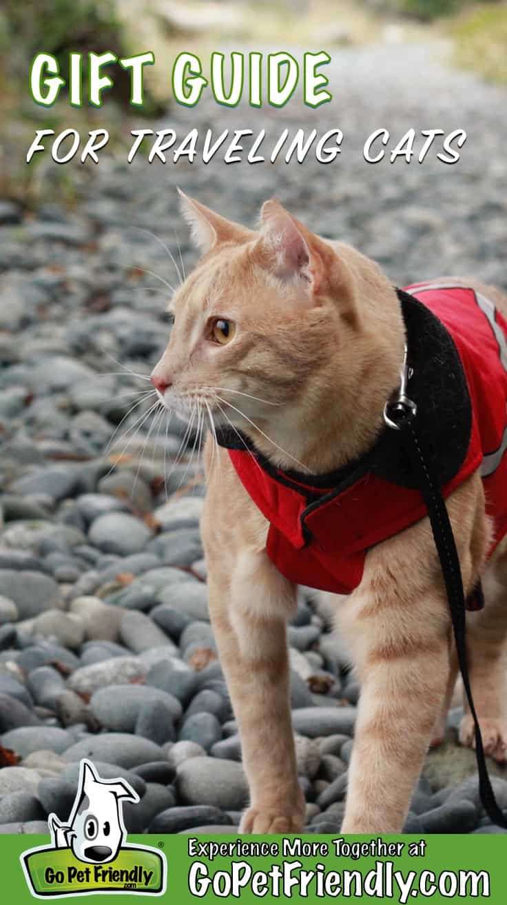 Fish the cat in on a rocky trail wearing his red jacket, which makes a great gift for any traveling cat