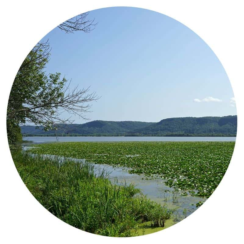 Mississippi River and bluffs from Trempealeau National Wildlife Refuge in Wisconsin