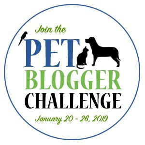 Badge announcing the pet blogger Challenge January 20-26, 2019