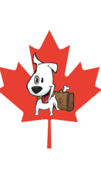 Characterchure of a white dog with bent ear on a red maple leaf background