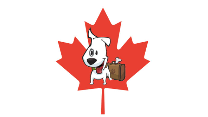 Traveling With Pets To Canada From The U.S. - Tips For Crossing The Border