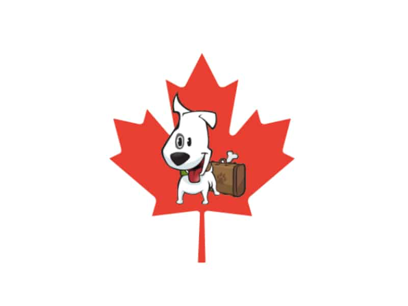 Traveling With Pets To Canada From The U.S. – Tips For Crossing The Border