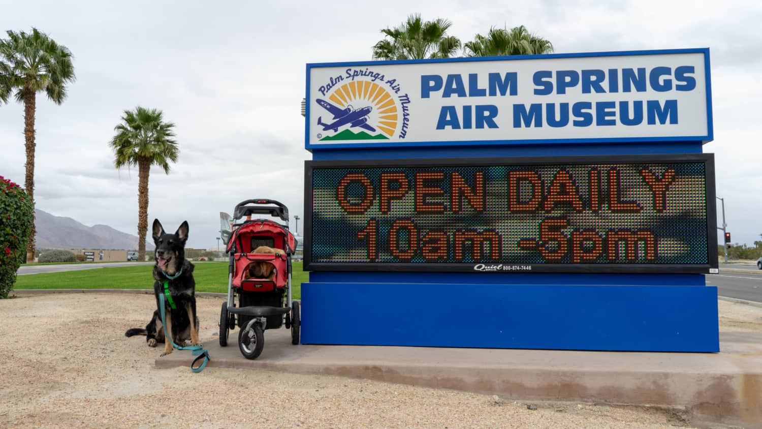 The Pet Friendly Palm Springs Air Museum
