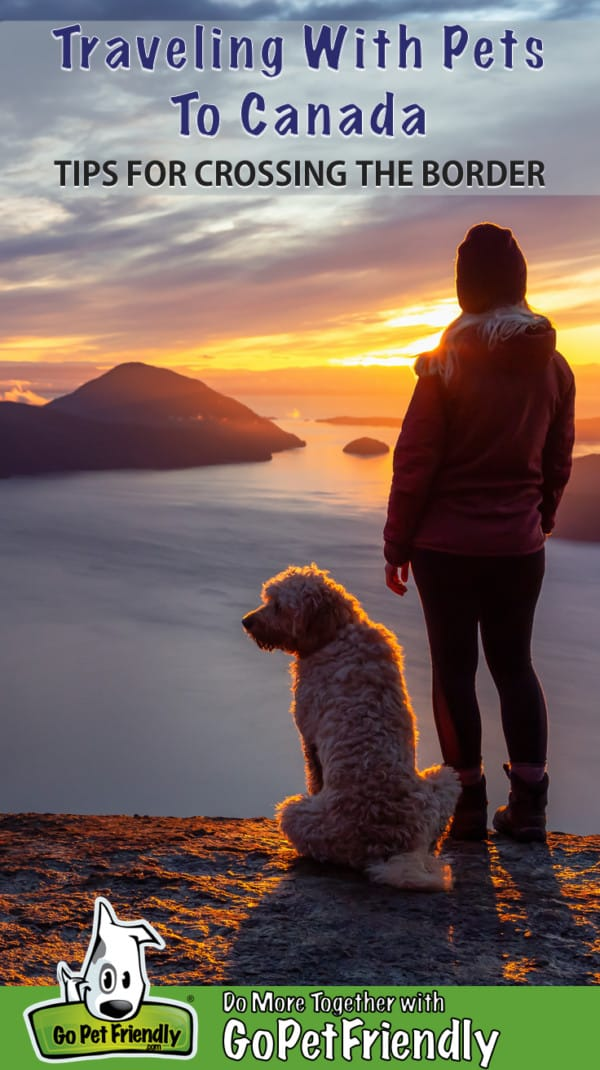 Woman and dog on a Canadian mountaintop at sunset