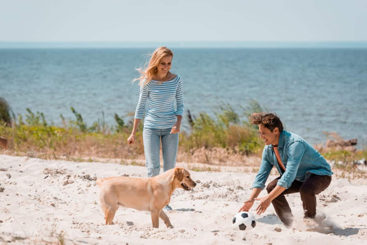 Couple playing with puppy on a pet friendly beach in Florida