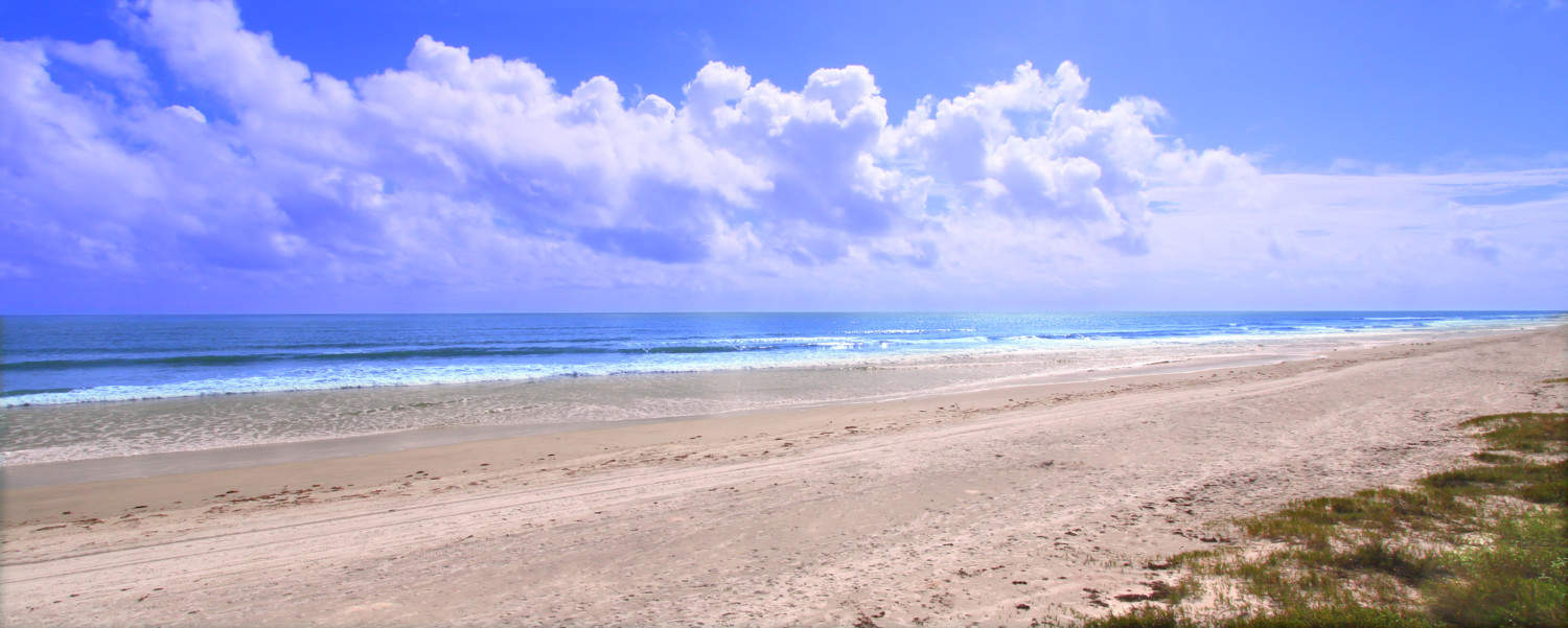 The amazing pet friendly beach along the east coast of Florida