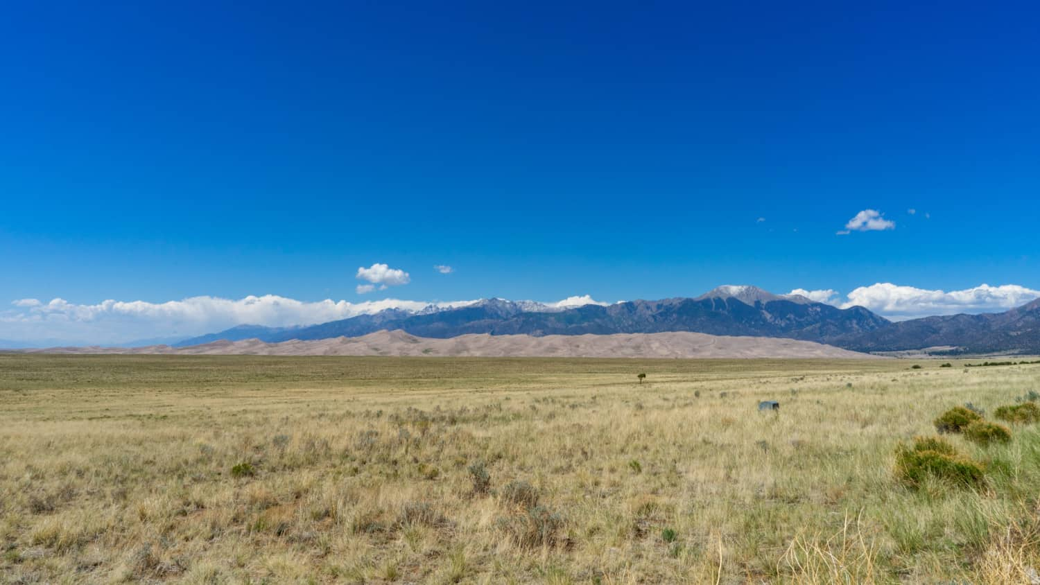 View of pet friendly Great Sand Dunes National Park with the Sangre de Cristo Mountains in the background