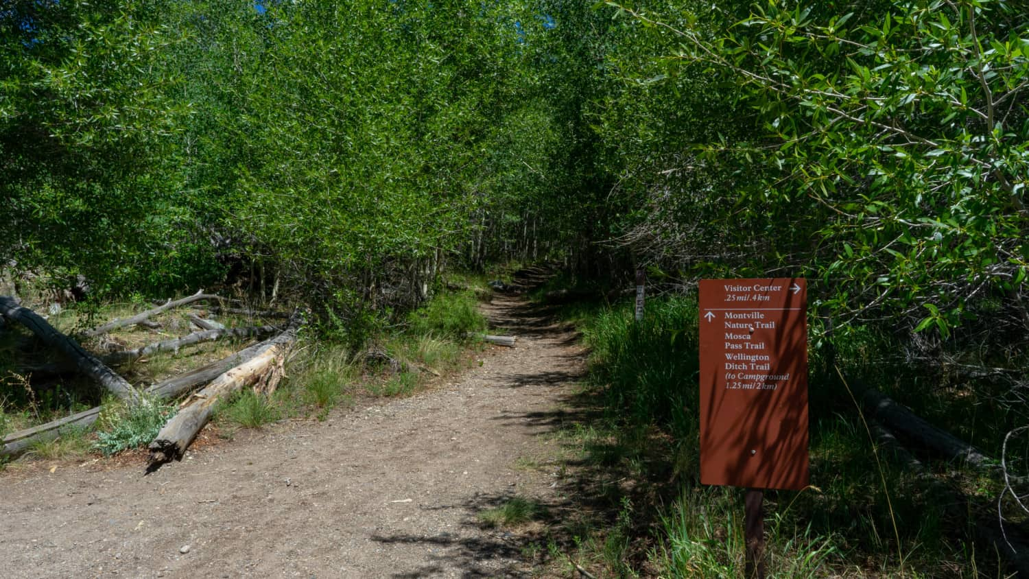 Sign at the pet friendly trail head in Great Sand Dunes National Park