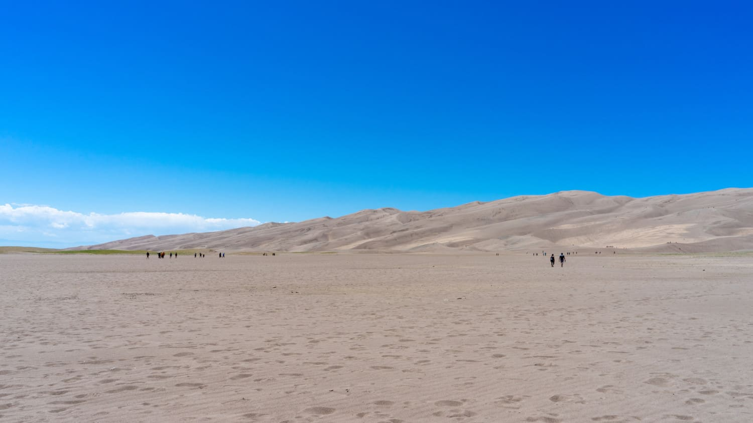 Pet friendly dunefield at Great Sand Dunes National Park in Colorado