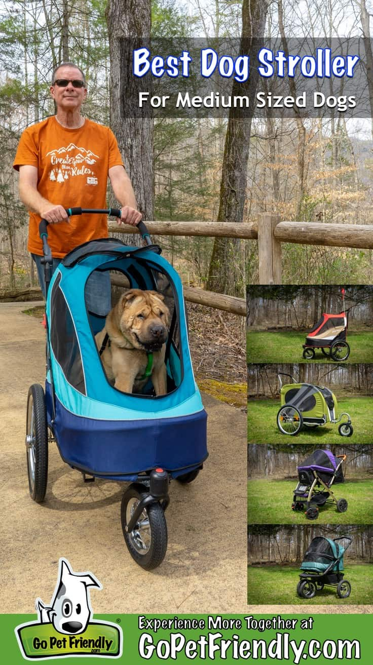 We testing five dog strollers to determine which is best for medium sized dogs