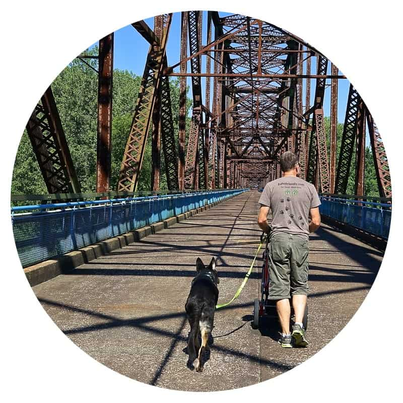 Man and dog walking across Chain of Rocks Bridge on Route 66 in Illinois