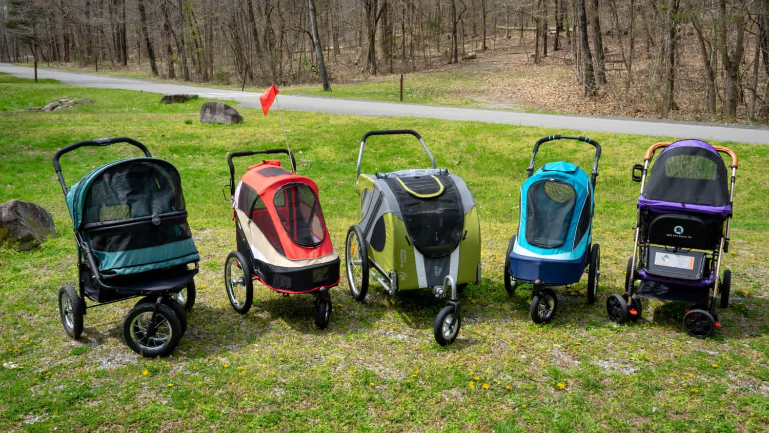 Five dog stroller sitting side by side