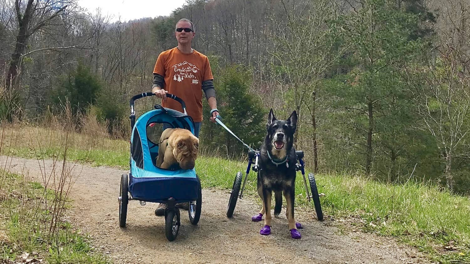 Man, dog in dog stroller, dog in wheelchair on a pet friendly trail