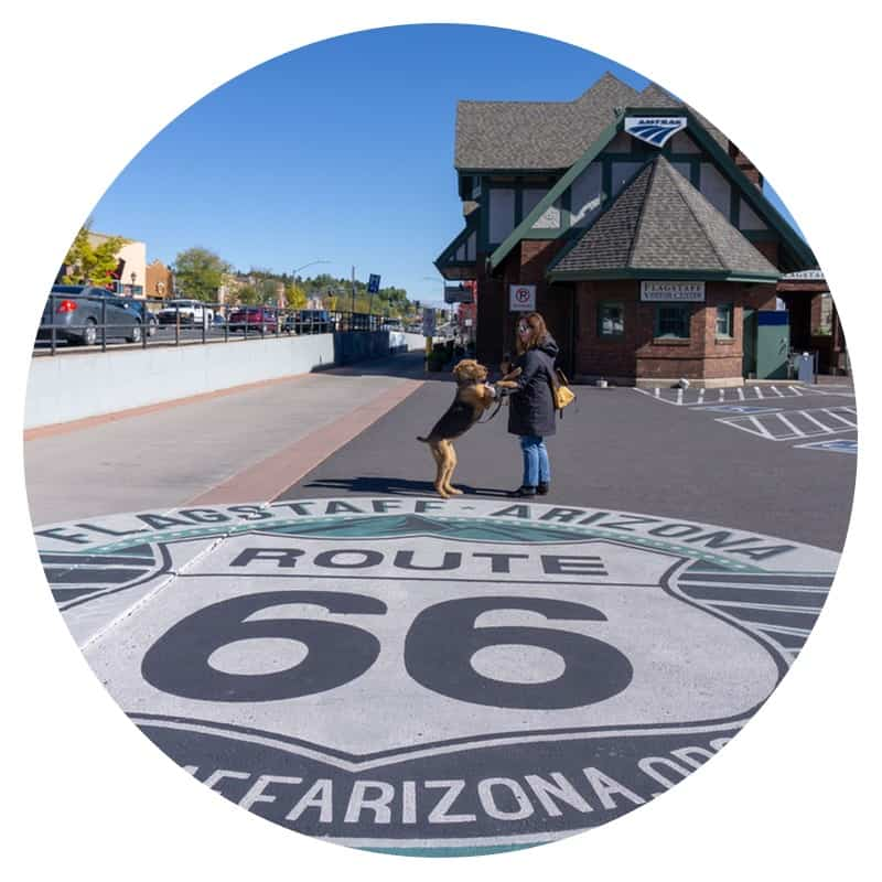 Woman and her dog on the historic Route 66 sidewalk mural in Flagstaff, Arizona