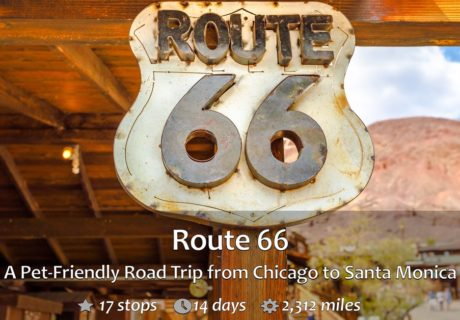 Route 66 – Pet Friendly Sights From Chicago to Santa Monica