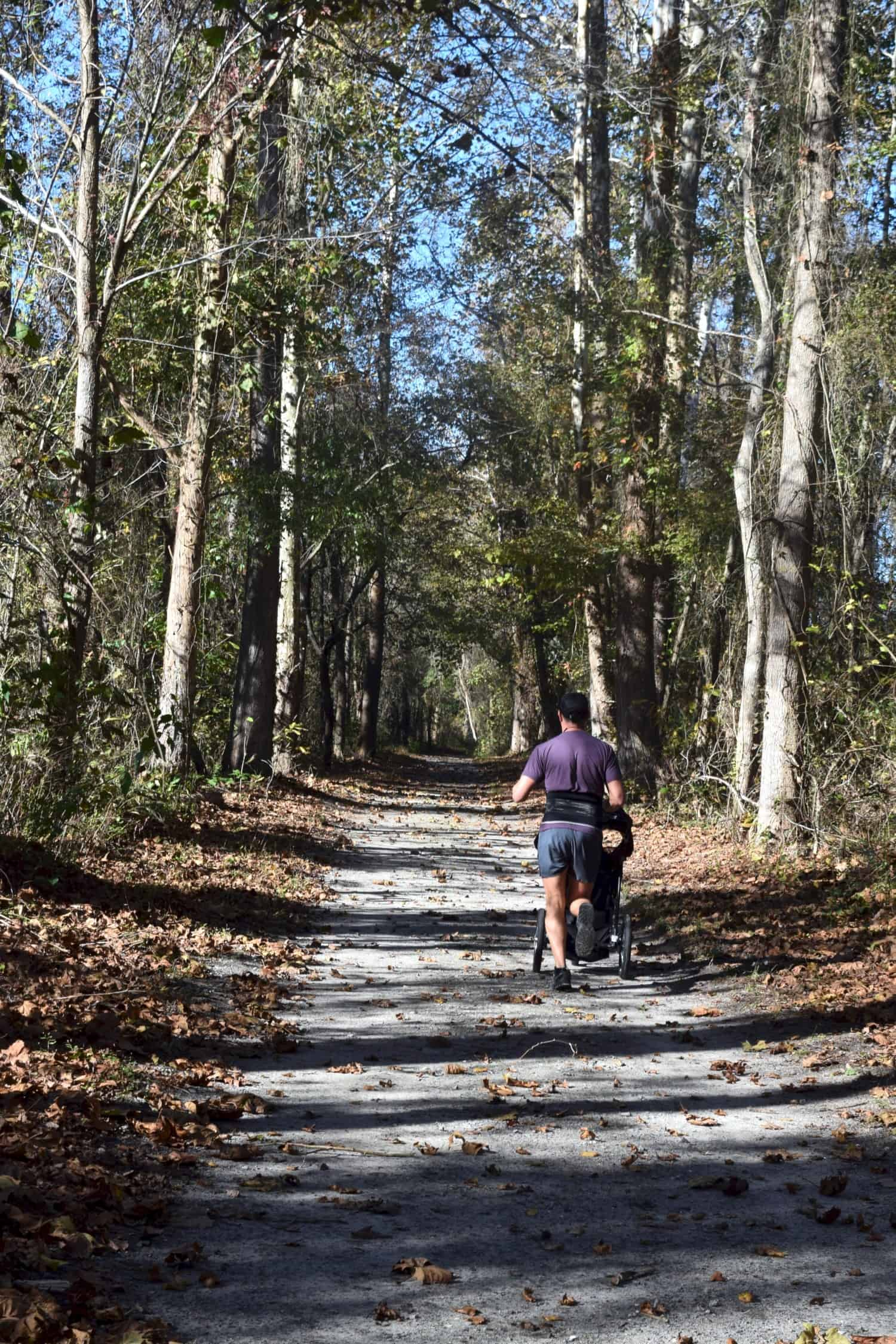 Runner on trail in pet friendly Great Dismal Swamp State Park